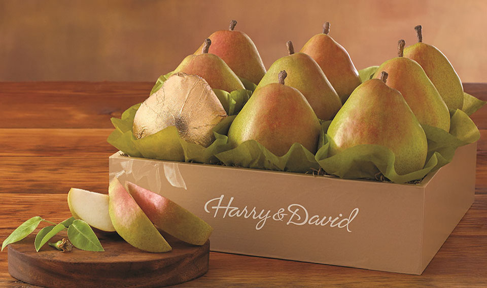 Fruit gifts and gift basket ideas macys fruit gift ideas negle Gallery