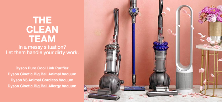 The Clean Team in a messy situation? Let them handle your dirty work, Dyson Pure Cool Link Purifier, Dyson Cinetic Big Ball Animal Vacuum, Dyson V6 Animal Cordless Vacuum, Dyson Cinetic Big Ball Allergy Vacuum