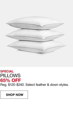 special pillows 65 percent off. regular $120 to $240. select feather and down styles.