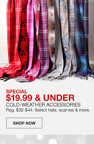Special, 19 dollars 99 cents and under. Cold Weather Accessories. Regularly 32 dollars to 44 dollars. Select hats, scarves and more. Shop Now